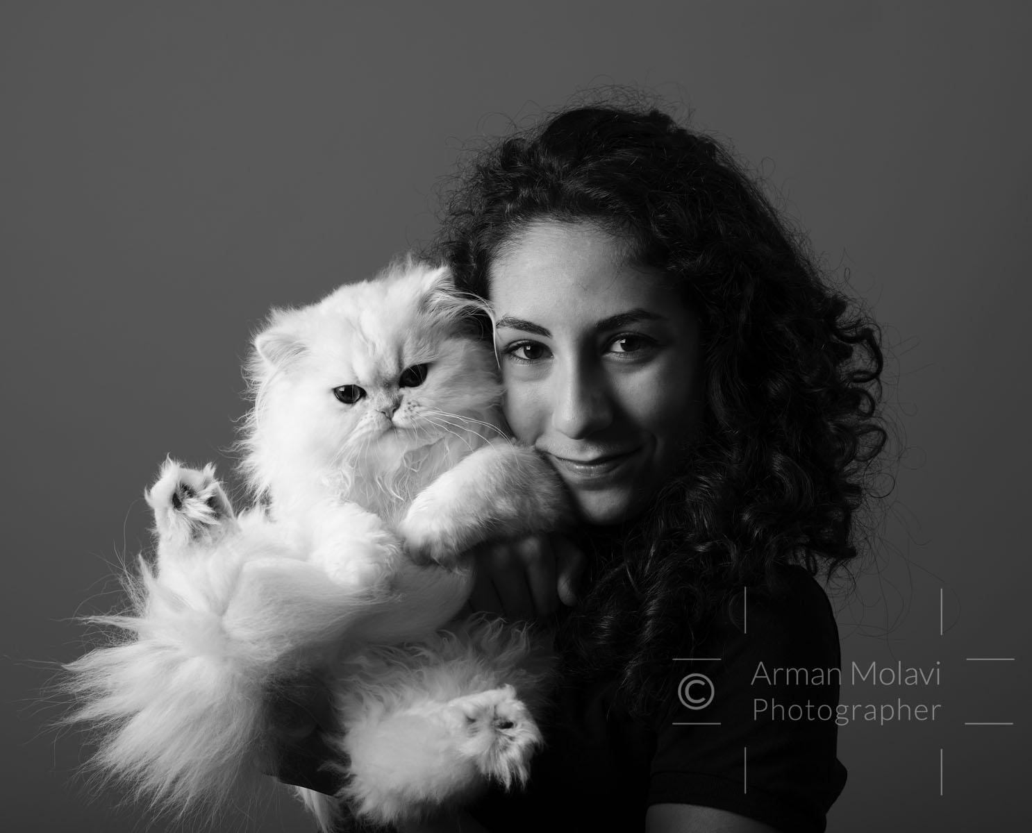 Portrait chaton blanc